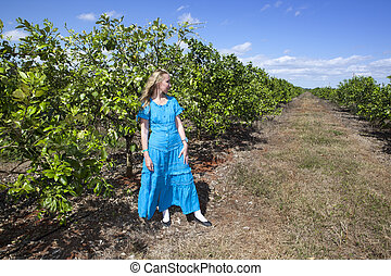 blaues, frau, kuba, langer, plantage, kleiden, orangen
