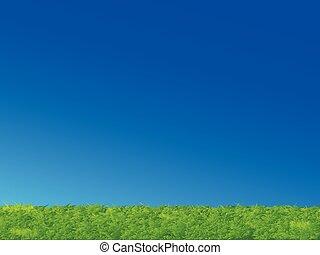 blaues grün, gras, himmelsgewölbe, landschaftsbild