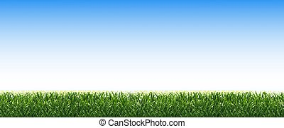 blaues grün, gras, umrandungen, himmelsgewölbe