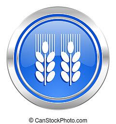 blaues, landwirtschaftlich, ikone, taste
