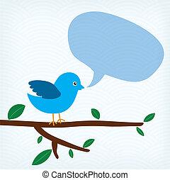 blaues, nachricht, blase, vogel