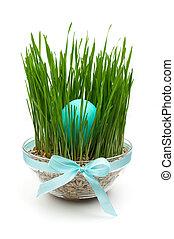 blaues, osterei, in, gras, dekoration, freigestellt