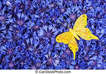 blaues, papillon, gelber , fruehjahr, kornblume