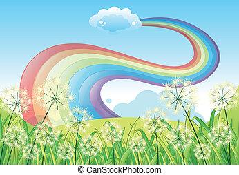 blaues, regenbogen, freier himmel