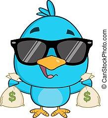 blaues, reizend, sonnenbrille, vogel