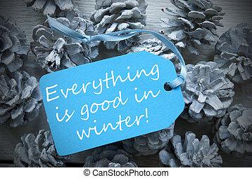 blaues, tanne, guten, kegel, licht, etikett, alles, notieren, winter