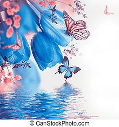 blaues, tulpen, mit, mimose, und, papillon, fruehjahr, hintergrund