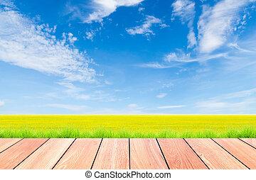 blaues, vordergrund, himmelsfeld, holz, grüner reis, planke