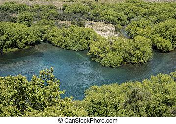 blaues wasser, fluß, in, grüner wald, landschaftsbild