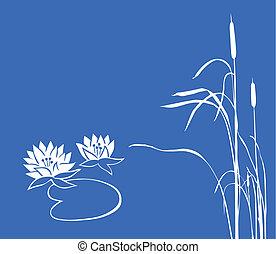 blaues wasser, hintergrund., vektor, schilfgras, lilie