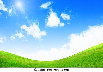 blauw groen, helder, gras, hemel