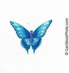 blauwe , achtergrond., witte , vlinder, illustratie