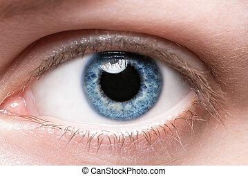 blauwe , afsluiten, oog, op