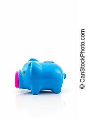 blauwe , besparing, piggy bank