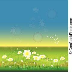 blauwe bloemen, hemel, achtergrond