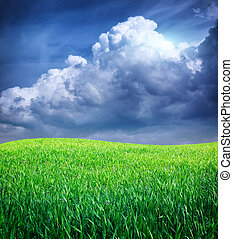 blauwe , diep, gras, sky.
