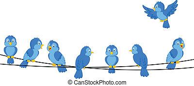 blauwe , draad, spotprent, vogel