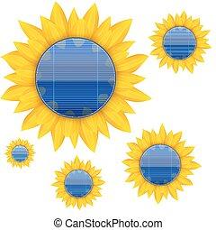 blauwe , elektrisch, sunflower., achtergrond, vector, zonnepaneel