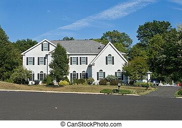 blauwe , gezin, pennsylvania, hemel, groot, enkel, straat, voorkant, thuis