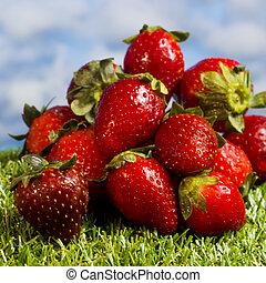 blauwe hemel, aardbeien, groene achtergrond, gras, rood