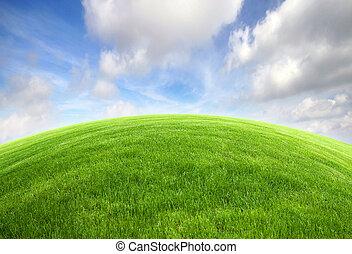 blauwe hemel, akker, helder, groen gras