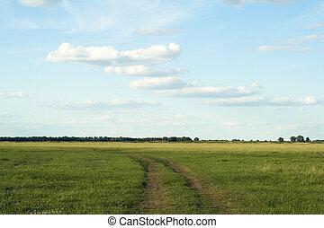 blauwe hemel, diep, horizon, woestijn, straat
