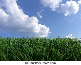 blauwe hemel, groen gras