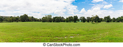 blauwe hemel, helder, groene achtergrond, gras