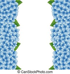 blauwe , hortensia, bloemenrand