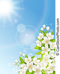 blauwe , kers, bloeiend, hemel, achtergrond