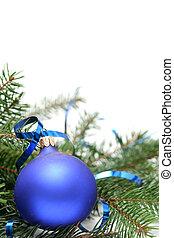 blauwe , kerstmis, bloembollen