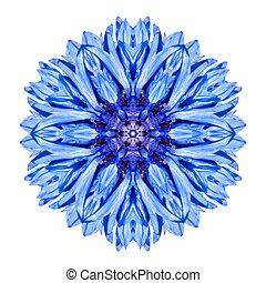blauwe , korenbloem, mandala, bloem, kaleidoscope,...