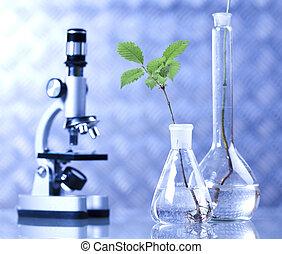blauwe , laboratorium, wetenschap, floral