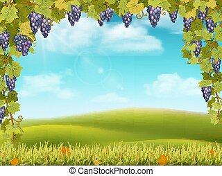 blauwe , landelijk, druif, boog, landscape