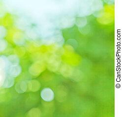 blauwe , lente, vaag, kleuren, groene achtergrond