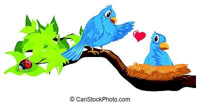 blauwe , nest, twee vogels