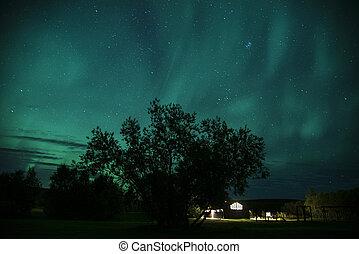 blauwe , noordelijk, ijsland, dageraad, lichten, borealis