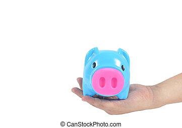 blauwe piggy bank, in, man, hand, vrijstaand, op wit, achtergrond, clippi