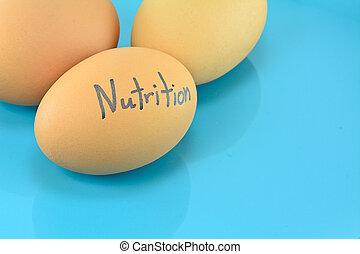 blauwe plaat, woord, voeding, voedingsmiddelen, eitjes, concep
