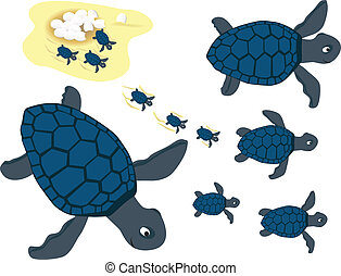 blauwe , set, schildpadden