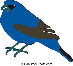 blauwe vogel, 01