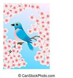 blauwe vogel