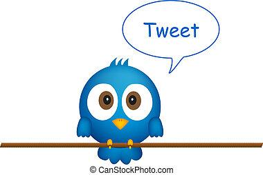blauwe vogel, het zingen, koord, zittende