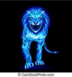 blauwe , vuur, leeuw