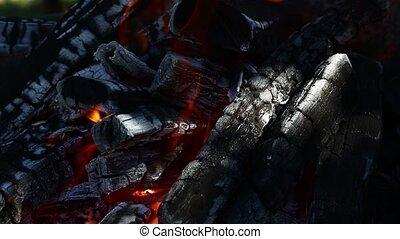 Blaze bonfire wood fire flame spires in fireplace - Blaze of...