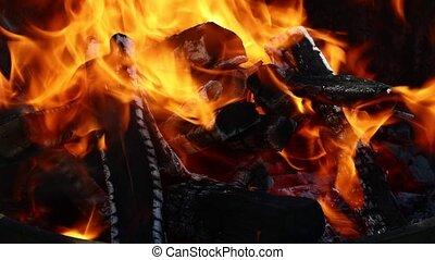 Blaze of bonfire wood fire flame spires in fireplace
