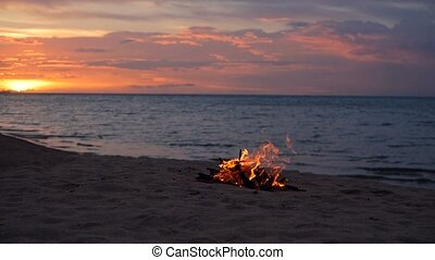 Blazing campfire on beach, summer evening. Bonfire in nature as background. Burning wood on white sand shore at sunset.