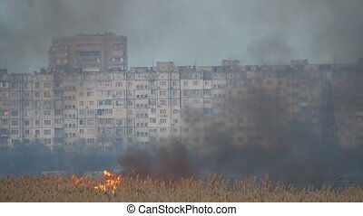 Blazing wetland with forks of flame on the Dnipro bank in...