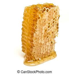 blbeček, plástev medu