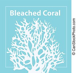 Bleached Coral. Trendy color of 2020